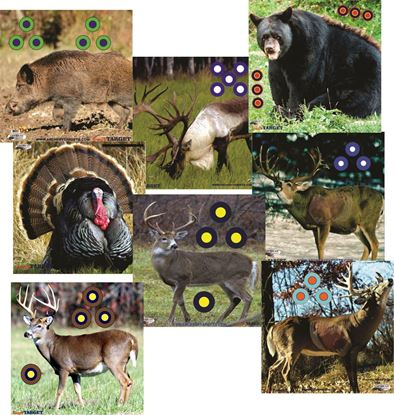 Picture of Set of Eight Large Infinity Face Animal Target Faces
